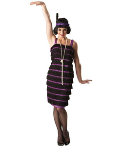 Ladies Flapper Dress Costume